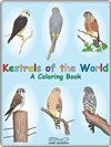 Preview of Kestrels of the World