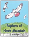 Preview of The Raptors of Hawk Mountain