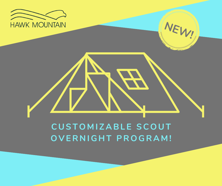Night on the Mountain: NEW customizable scout program