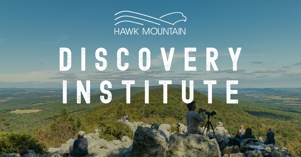 Discovery Institute Graphic with North Lookout background