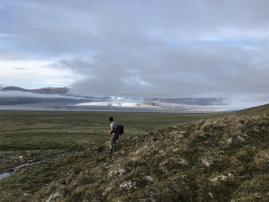 Senior Scientist Dr. JF Therrien hiking across terrain in the Arctic on Bylot Island