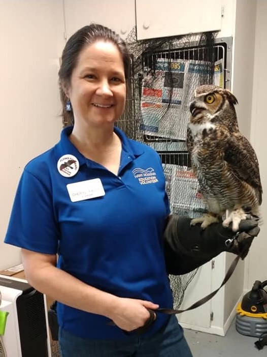 Volunteer Cheryl Faust with the Great Horned Owl education bird