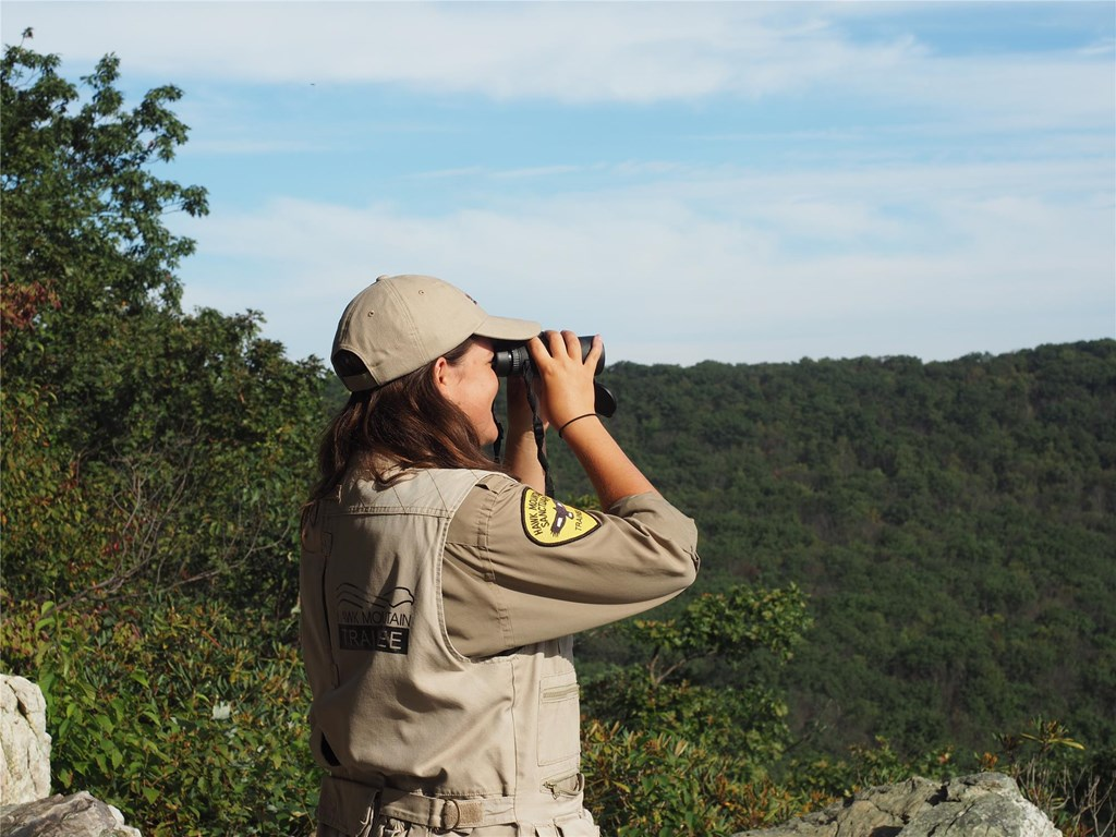 A Science Trainee uses binoculars to search for migrating raptors from South Lookout