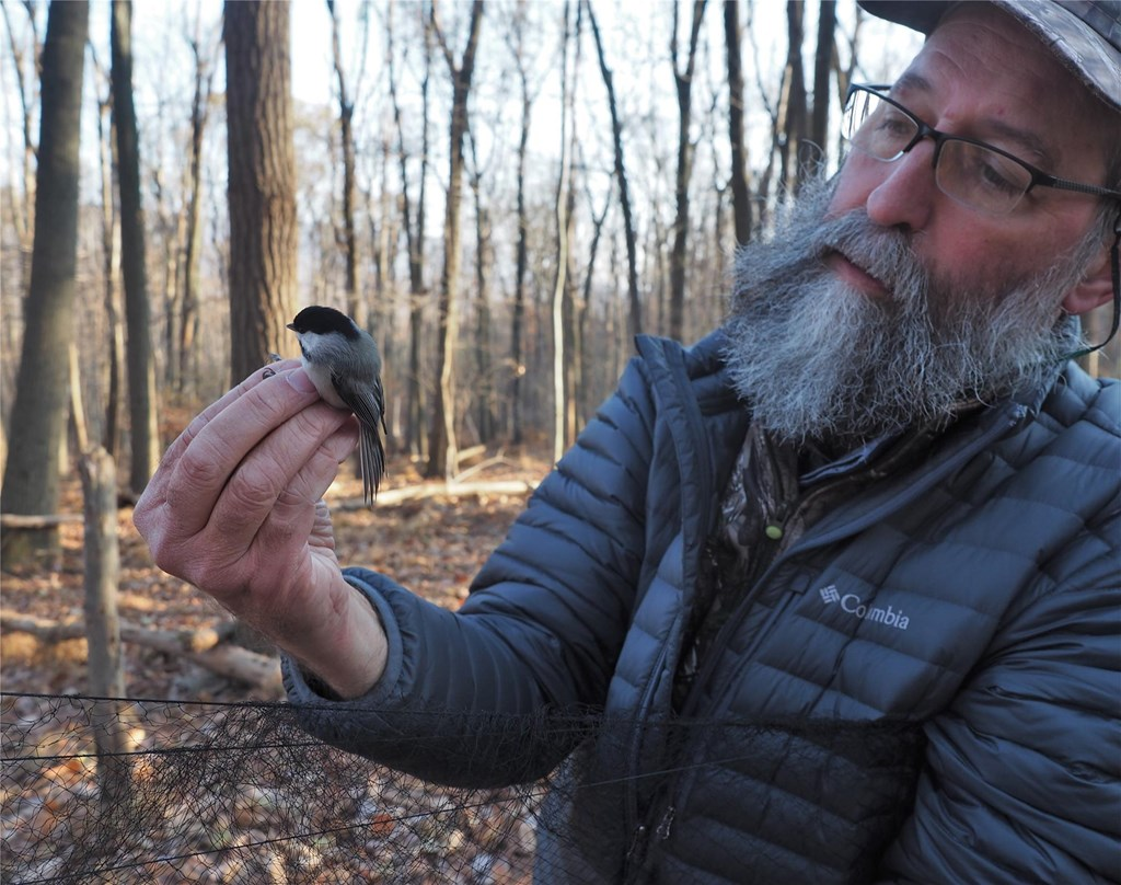 Dr. Robert Curry with a Chickadee