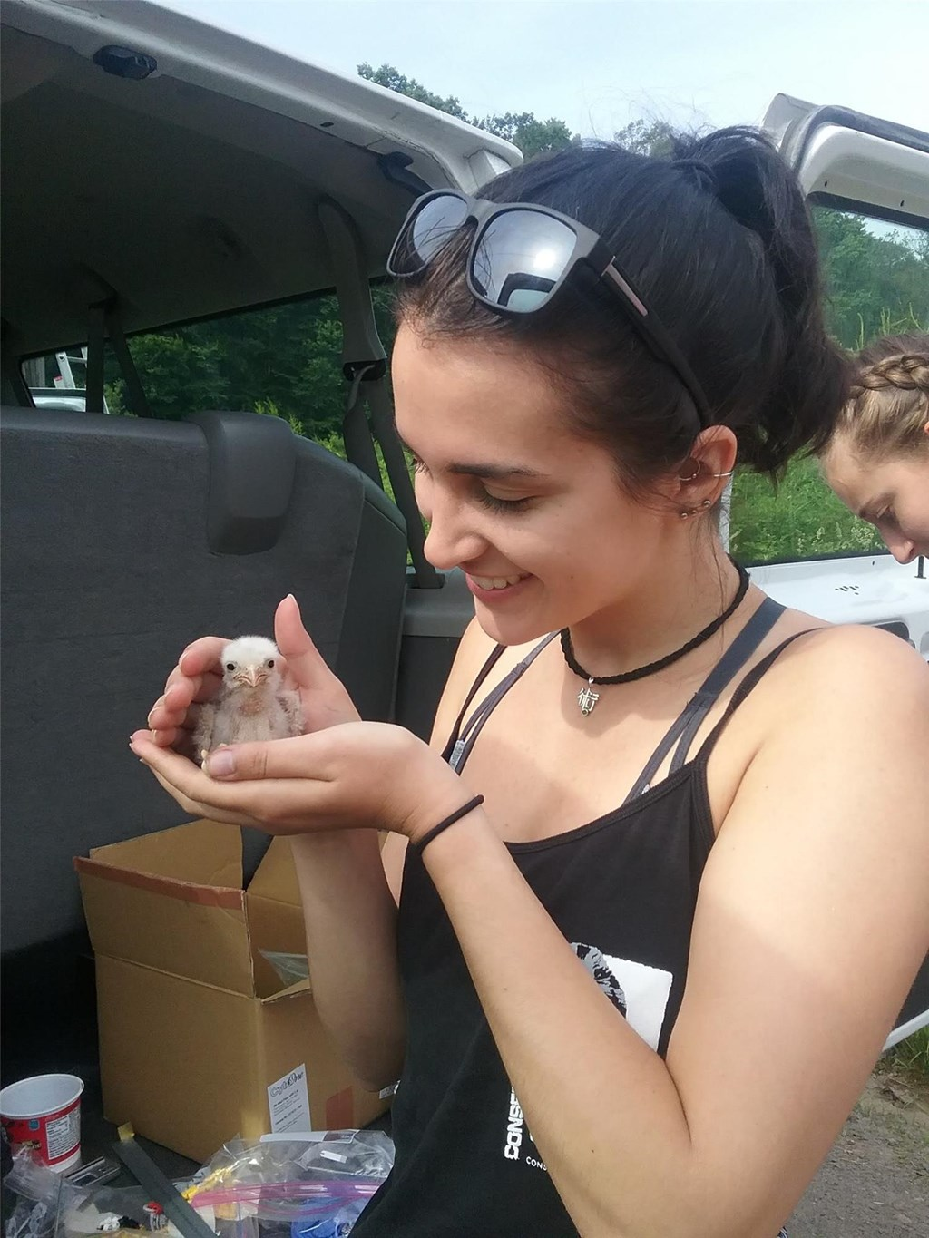 Summer Field Experience Trainee holding a recently banded American kestrel chick.