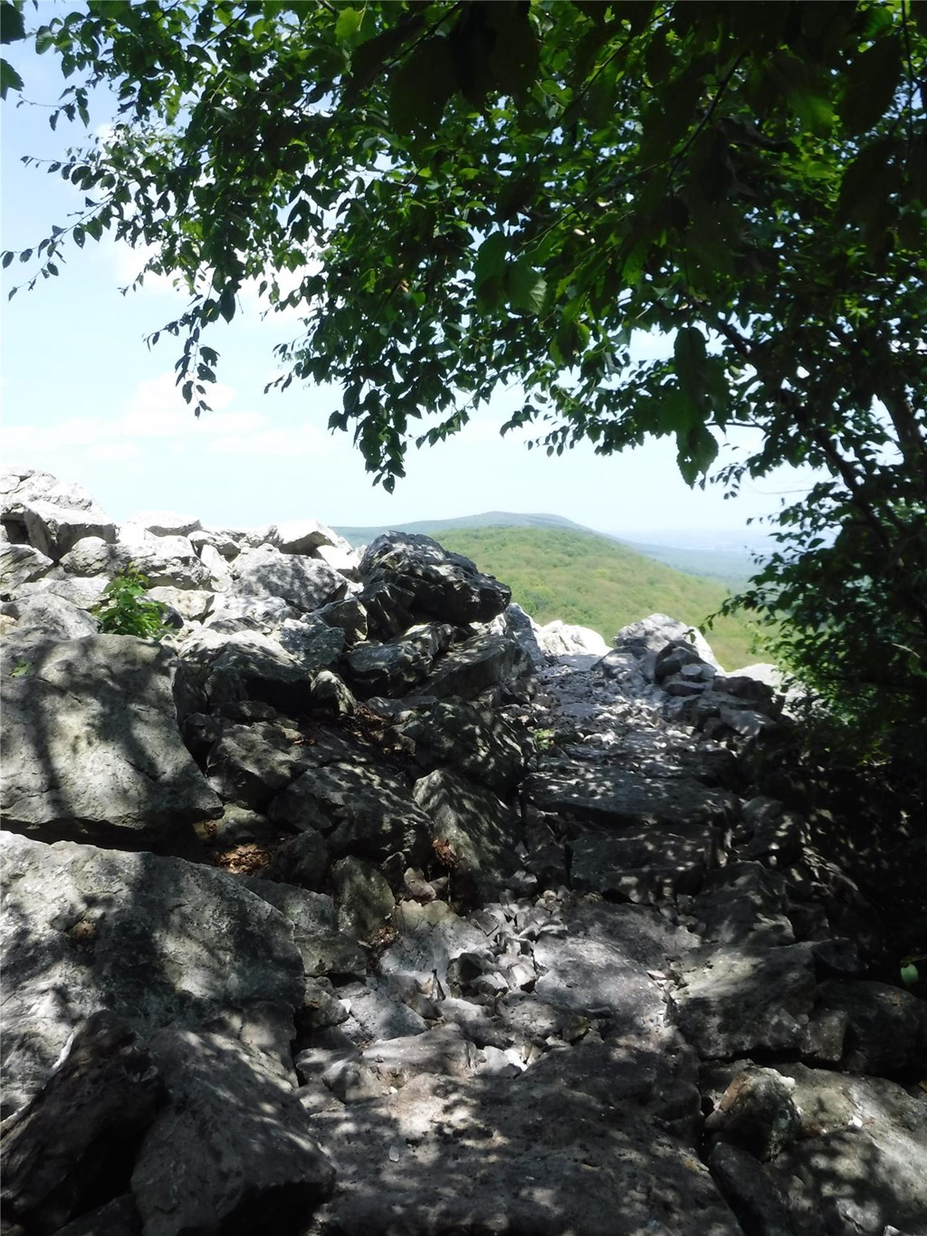View of the Mountain through trees and boulders