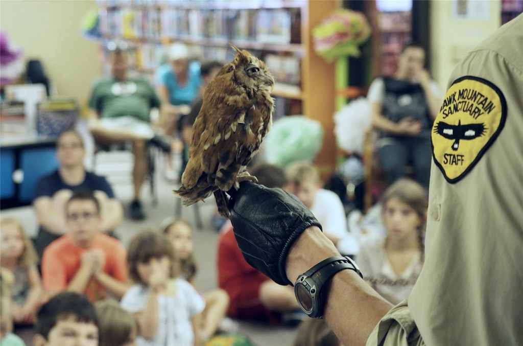 Education staff holding screech owl at an off-site program.
