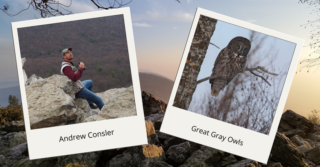 Andrew and Great Gray Owls