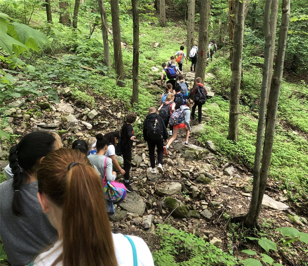 Students hiking on a forest trail