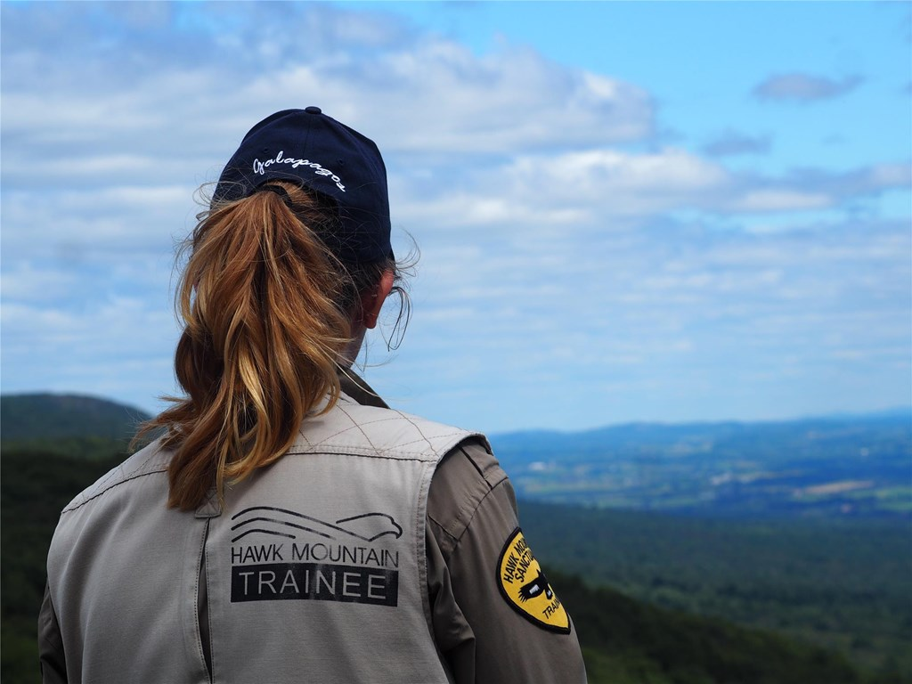 Conservation Trainee looks out over North Lookout vista.