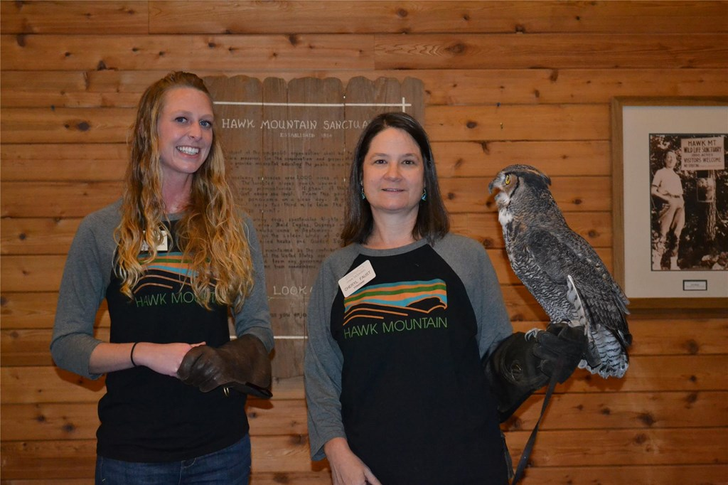 Volunteers Kelsey and Cheryl with the Education Great-horned Owl