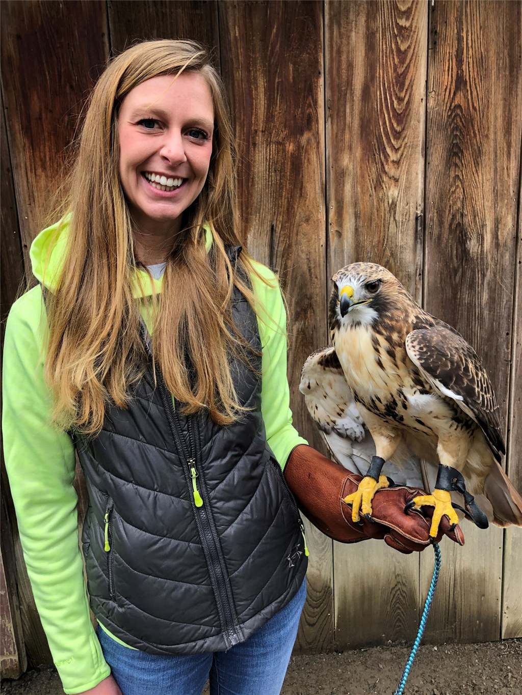 Volunteer Kelsey Schwenk with our education red-tailed hawk