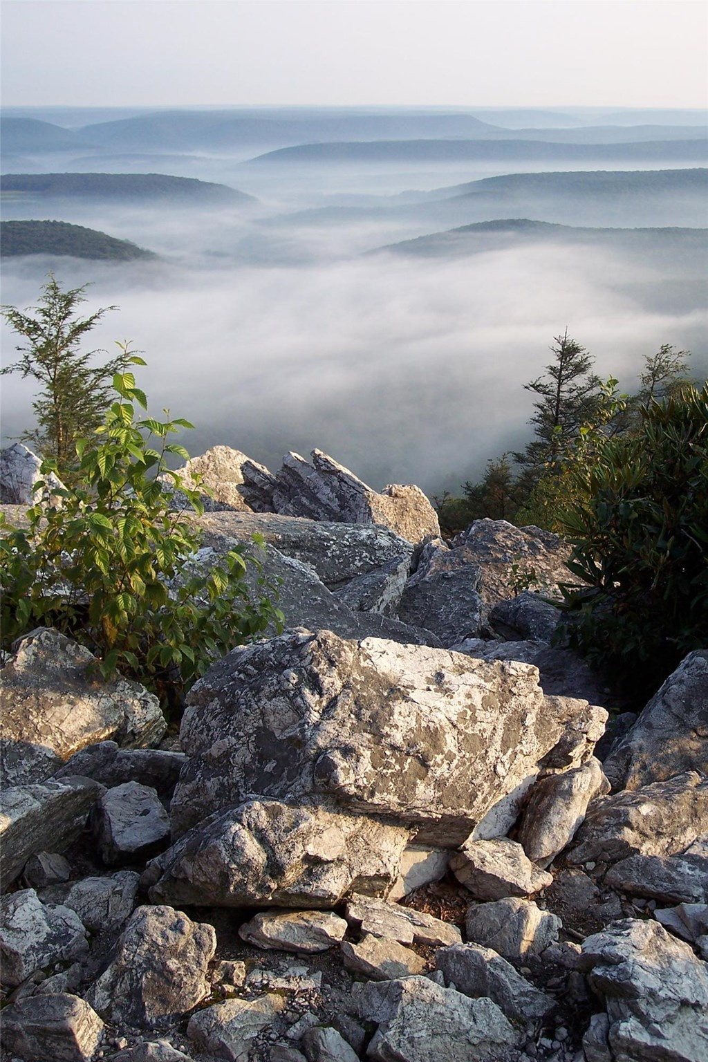 Fog settles among the mountain ridges, view from North Lookout.
