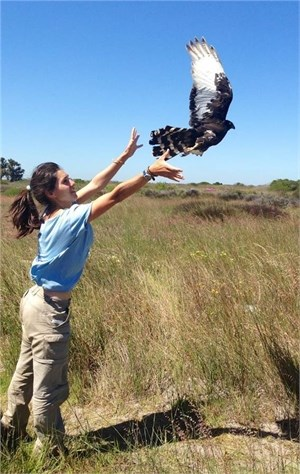 Sophie with black harrier