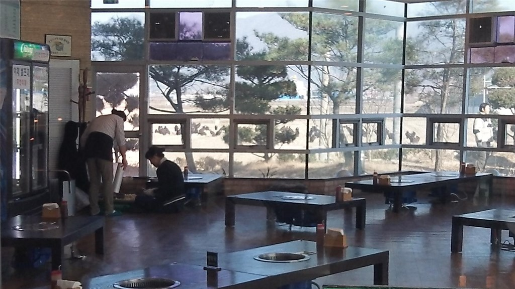 vulture restaurant in korea